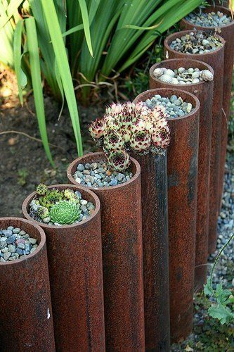 You can plant little mini gardens inside of steel pipe edging.