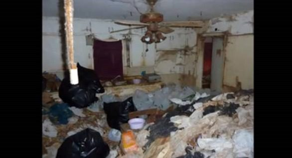 house hoarding cleaning clean bed bugs bathroom