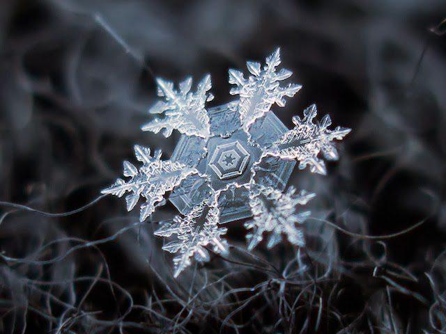 snowflake10