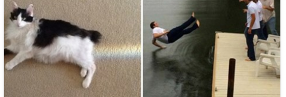 well timed photos