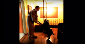 soldier and dog reunions