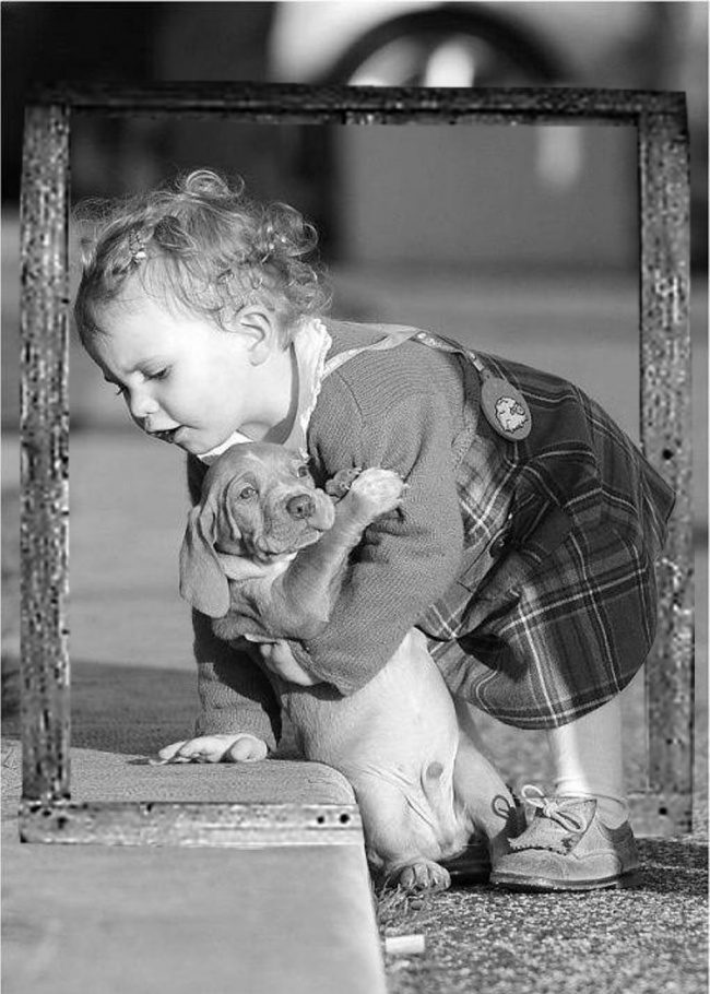 love for animals photos 6