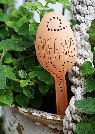 growing organic garden 6