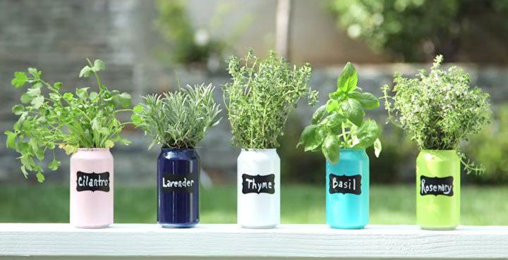 growing organic garden 9