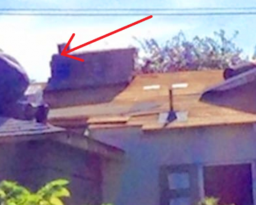 elderly-neighbor-roof