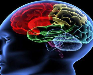 benefits of silence on brain