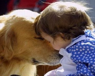 children raised with dogs healthier