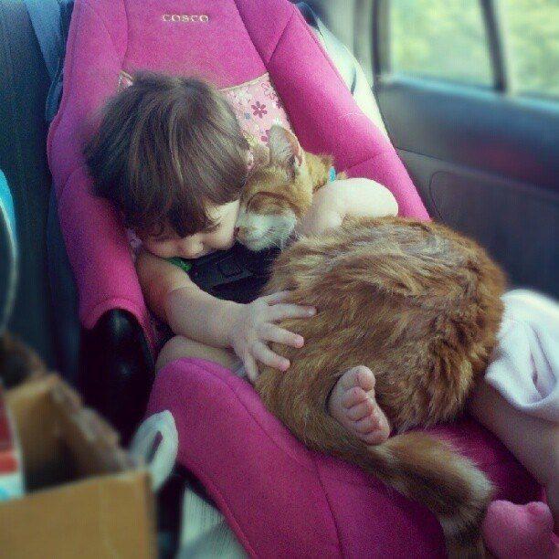 Friends in the Car Seat