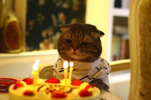 The Existential Birthday