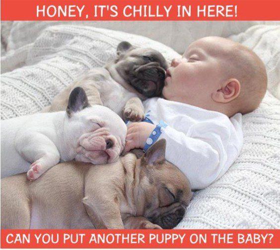 Funny-Baby-Photo25-564x504