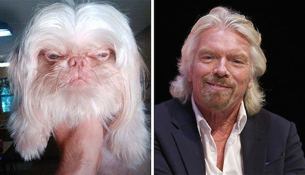 Richard Branson and this dog