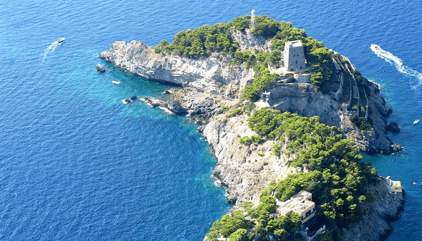 inside dolphin island uncovering the mediterranean�s most