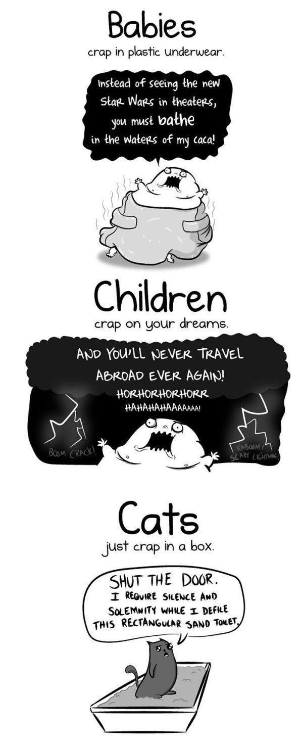 cat vs baby
