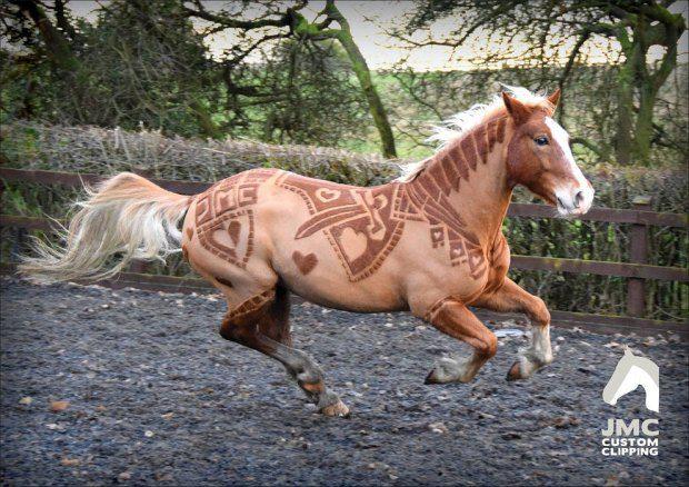 horse hairdo 1
