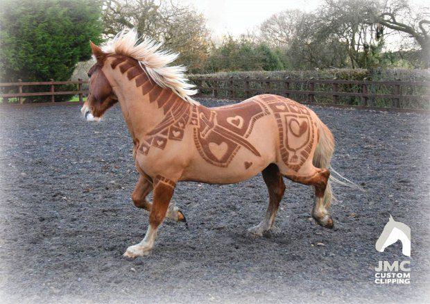 horse hairdo 2