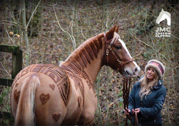 horse hairdo 3