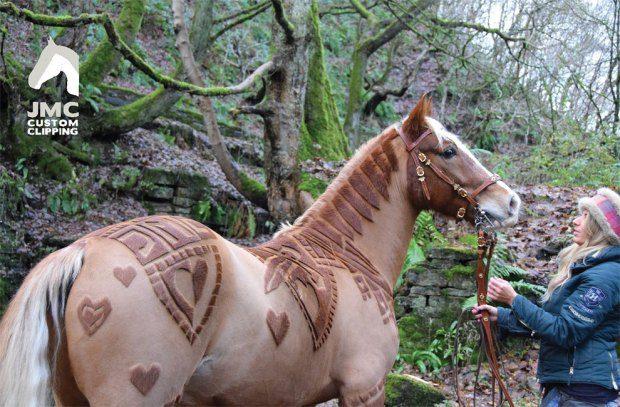 horse hairdo 4