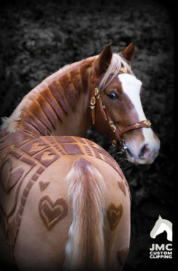 horse hairdo 6