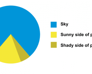 Silliest Pie Charts On The Internet