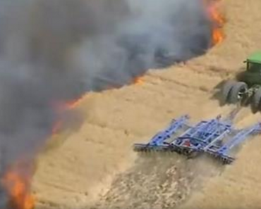 farmer vs wildfires
