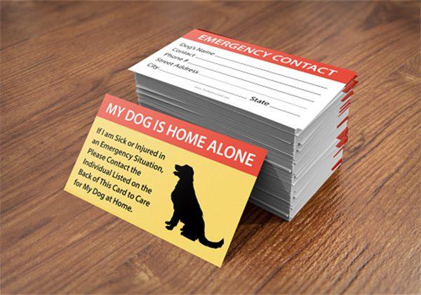 pet care card 1